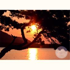 Благотворительная открытка. Закат на пляже