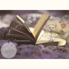 Книжные фантазии