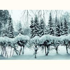 Благотворительная открытка. Зима
